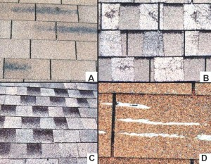 Asphalt-shingle-defects-5
