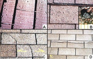 Asphalt-shingle-defects-6