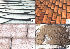 Asphalt-shingle-defects-7