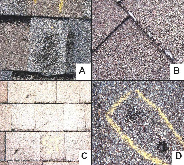 Storm Stopper Roofing Roofing Hail Damage To Asphalt